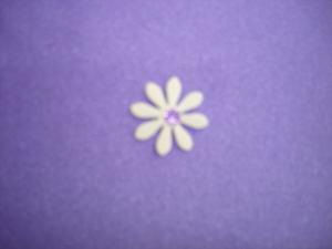 Lilas Shiny ( Fleur )